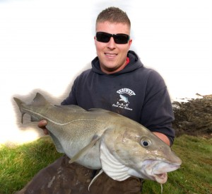 bristol channel cod