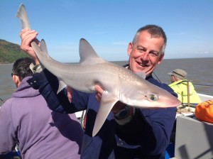 Veals tackle scores with a nice smooth hound
